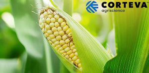 Corteva Agriscience partners with local governments