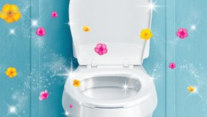 How to keep your toilet looking new and smelling fresh for longer: S.C. Ajmani, General Physician
